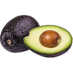 Large Avocados Each